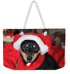 Miniature Pinscher Wishing A Merry Christmas Weekender Tote Bag by Christian Lagereek
