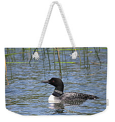 Weekender Tote Bag featuring the photograph Minnesota State Bird by Penny Meyers