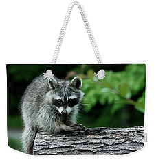 Mischievous Weekender Tote Bag by Linda Segerson
