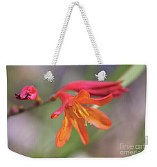 Weekender Tote Bag featuring the photograph Misplaced Beauty by Linda Lees