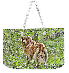 Weekender Tote Bag featuring the photograph Miss B by Rhonda McDougall