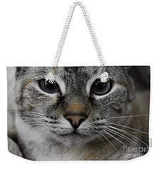 Miss Faryn Weekender Tote Bag by Skip Willits