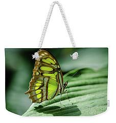 Miss Green Weekender Tote Bag by Nick Boren