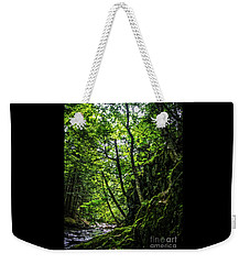 Weekender Tote Bag featuring the photograph Missisquoi River In Vermont - 1 by James Aiken