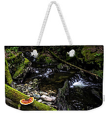 Weekender Tote Bag featuring the photograph Missisquoi River In Vermont - 2 by James Aiken