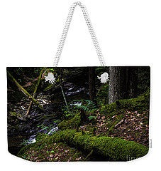 Weekender Tote Bag featuring the photograph Missisquoi River In Vermont - 3 by James Aiken