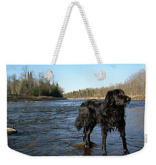 Weekender Tote Bag featuring the photograph Mississippi River Dog On The Rocks by Kent Lorentzen