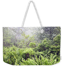 Weekender Tote Bag featuring the photograph Misty Afternoon In An Eastern Forest Thicket, Pennsylvanis by A Gurmankin