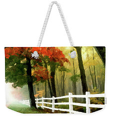 Weekender Tote Bag featuring the painting Misty In The Dell P D P by David Dehner