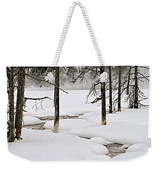 Weekender Tote Bag featuring the photograph Misty Morn by Susan Rissi Tregoning
