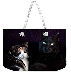 Weekender Tote Bag featuring the photograph Mochi And Stinky by Laura Melis