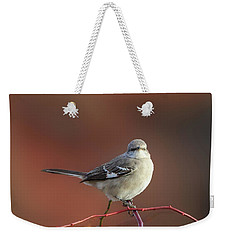 Mocking Bird Morning Square Weekender Tote Bag by Bill Wakeley