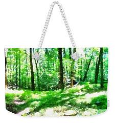 Weekender Tote Bag featuring the photograph Mohegan Lake Forever Green by Derek Gedney