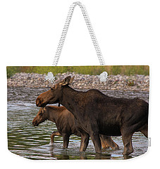 Mom And Baby Moose River Crossing Weekender Tote Bag by Mary Hone