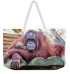 Mom And Baby Orangutan Weekender Tote Bag