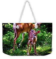 Weekender Tote Bag featuring the photograph Mom And Fawn by David Patterson