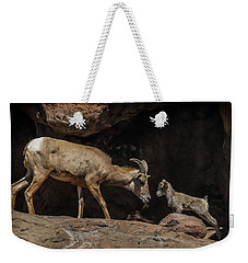 Weekender Tote Bag featuring the photograph Mom N Baby Desert Big Horn Sheep by Elaine Malott