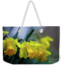Weekender Tote Bag featuring the photograph Mom's Daffs by Lois Bryan