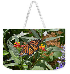 Weekender Tote Bag featuring the photograph Monarch Butterfly by Carol  Bradley