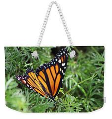 Monarch Butterfly In Lush Leaves Weekender Tote Bag