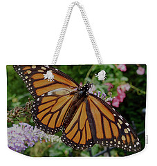Weekender Tote Bag featuring the photograph Monarch Butterfly by Melinda Saminski