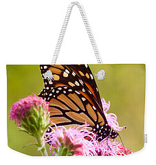 Weekender Tote Bag featuring the photograph Monarch Butterfly Square by Heidi Hermes