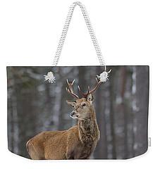 Monarch Of The Woods Weekender Tote Bag