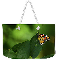 Weekender Tote Bag featuring the photograph Monarch On Leaf by Ann Bridges