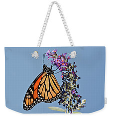 Weekender Tote Bag featuring the photograph Monarch Orange And Blue by Lara Ellis