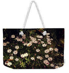 Weekender Tote Bag featuring the photograph Monarchs And Daisies by Cassandra Buckley