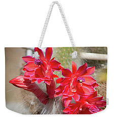 Monkey's Tail Cactus Flower Weekender Tote Bag