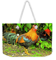 Weekender Tote Bag featuring the photograph Moorea Chicken by Bill Barber
