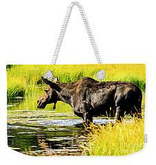Moose At Jackson Hole Weekender Tote Bag
