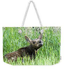 Moose Baby Weekender Tote Bag