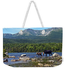 Moose Baxter State Park Maine 2 Weekender Tote Bag