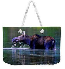 Moose In Swiftcurrent Lake, Glacier National Park Weekender Tote Bag
