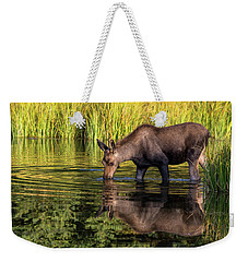 Weekender Tote Bag featuring the photograph Moose Reflections by Mary Hone