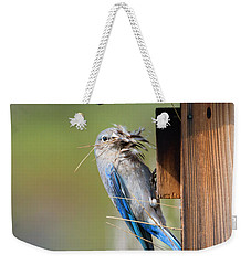 Weekender Tote Bag featuring the photograph More Than Mouthful by Mike Dawson