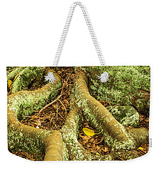 Weekender Tote Bag featuring the photograph Moreton Bay Fig by Werner Padarin