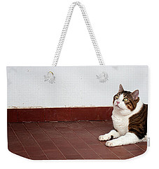 Weekender Tote Bag featuring the photograph Morfeas by Laura Melis
