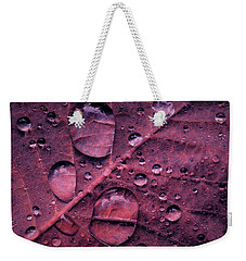 Weekender Tote Bag featuring the photograph Morning Catch by Gene Garnace