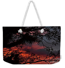 Morning Cold II Weekender Tote Bag by Angela J Wright