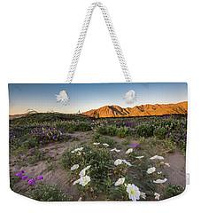 Morning Desert Evening Primrose Weekender Tote Bag