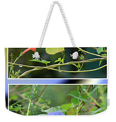 Weekender Tote Bag featuring the photograph Morning Glories And Butterfly by EricaMaxine  Price