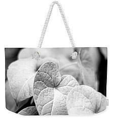 Weekender Tote Bag featuring the photograph Morning Glory Vines by Todd Blanchard