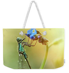 Morning Impression With Blue Dragonfly Weekender Tote Bag