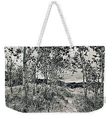 Weekender Tote Bag featuring the photograph Morning In The Dunes by Michelle Calkins