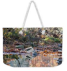 Morning In The Woods Weekender Tote Bag