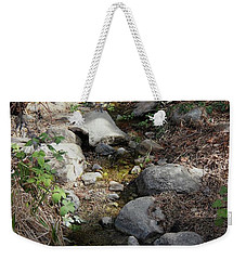 Morning Light At Strawberry Creek Weekender Tote Bag by Suzanne Oesterling