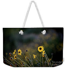 Weekender Tote Bag featuring the photograph Morning Light by Kelly Wade